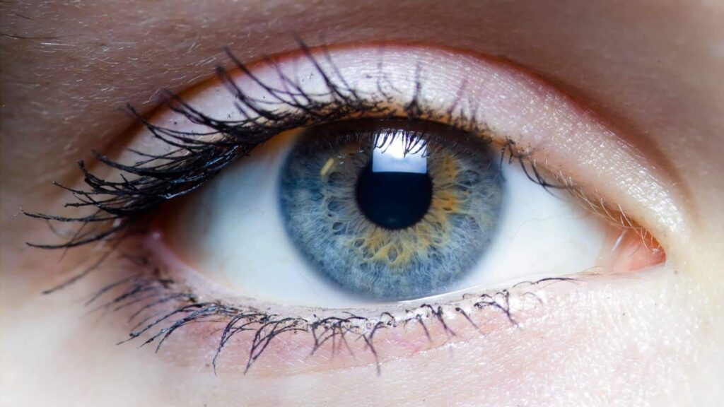 emdr therapy eye cork